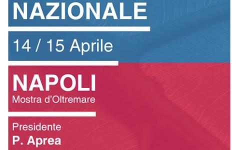 Hotel vicino congresso IVAS Napoli 1° Congresso Nazionale Mostra d'Oltremare (Napoli) 14-15 Aprile 2016